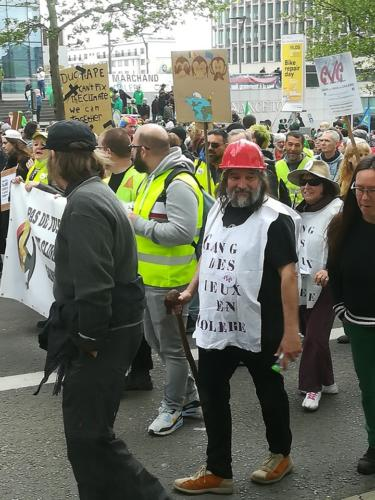 Manifestation Article 23 le 12 mai 2019